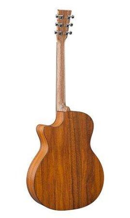 Martin GPCPA5K back and neck