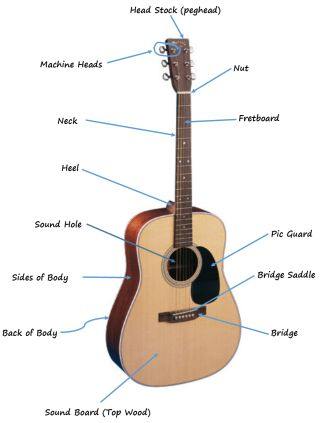 Image result for acoustic guitar anatomy