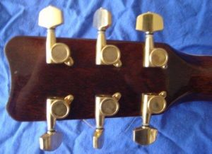 acoustic guitar enclosed gear mahine heads