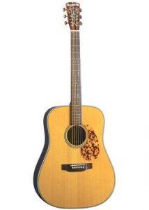 Blueridge acoustic guitar reviews