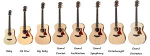 Taylor Guitars Categorized by Shape