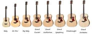 Taylor Guitars Categorized by Shape