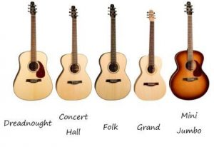 Seagull Guitars Categorized by Shape