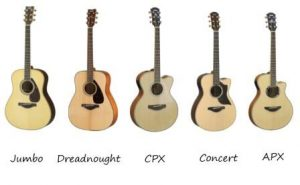 Yamaha Guitars Categorized by Shape