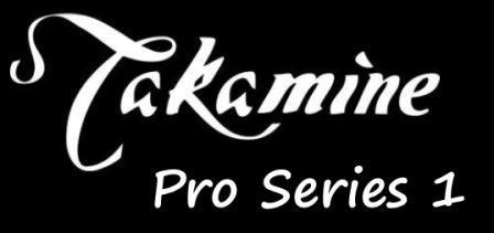 Takamine Pro Series 1