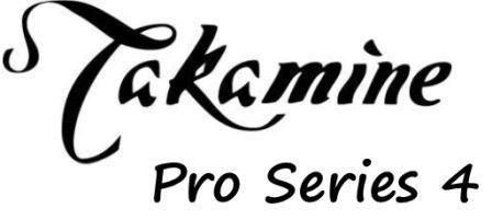 Takamine Pro Series 4