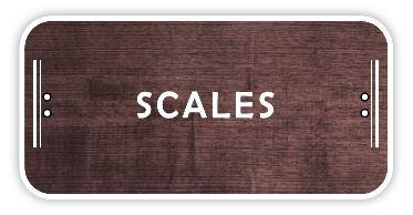 Acoustic Guitar scales