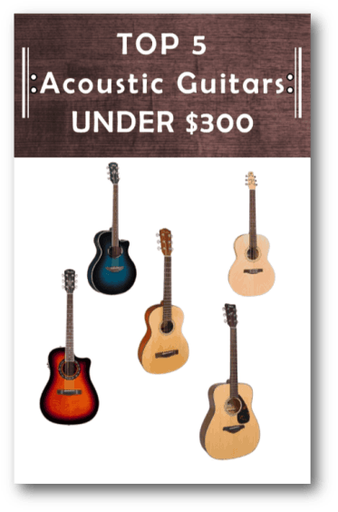 Top 5 Acoustic Guitars under 300